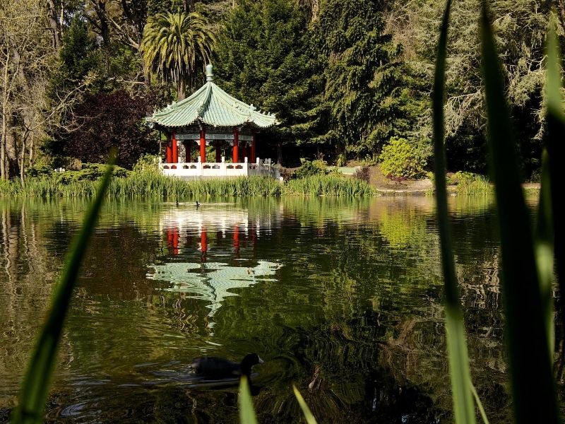 japanese garden in sf