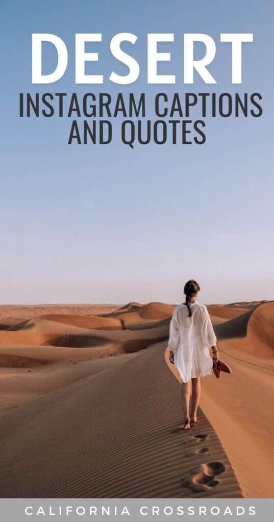 Visiting the desert? Whether you're in the deserts of California, the Southwest, the Sahara, Dubai, or elsewhere in the world, these desert quotes will inspire and captivate.  Desert Instagram captions | Desert Instagram spots | Desert captions | Desert pictures | Desert story | Palm desert | Desert aesthetic | quotes about the desert | Desert quote tattoo inspiration | desert wedding inspiration quotes | deserts California | desert photography | desert elopement quotes | desert wedding quotes