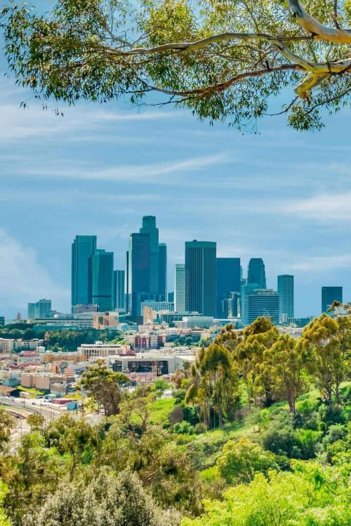 Los Angeles skyline as seen from a hill with lush green plant life framing the photo.