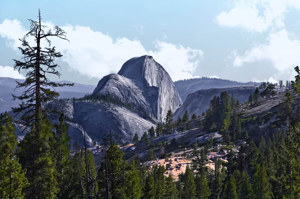 View of Half Dome, a famous Yosemite viewpoint, on a partly cloudy day with scattered pine trees.