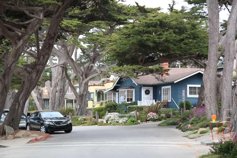 Houses of Carmel surrounded by cypress trees