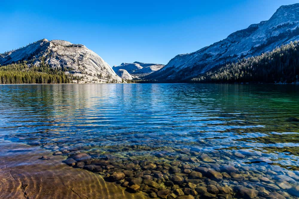 beautiful crystalline waters of turquoise tenaya lake in yosemite, with pebbles visible through the clear water