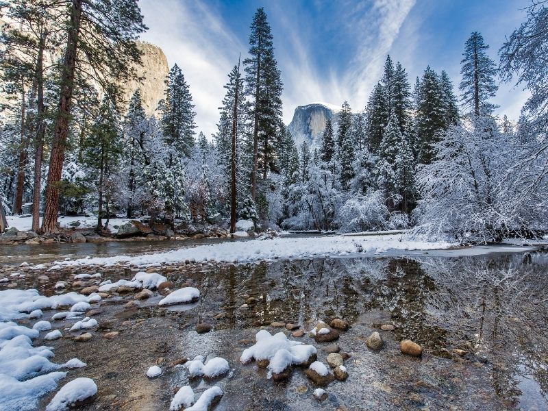 Yosemite Valley river with snowfall and trees covered in snow with granite landscape in background.