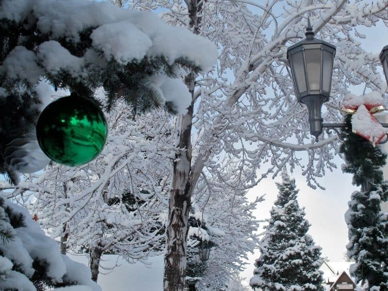 Close up of green ornament on tree and street lights as well as trees covered in snow in Big Bear Village in winter