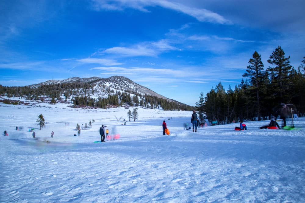 Lots of families out and about in the snow on a sunny day in winter in lake Tahoe enjoy sled rides