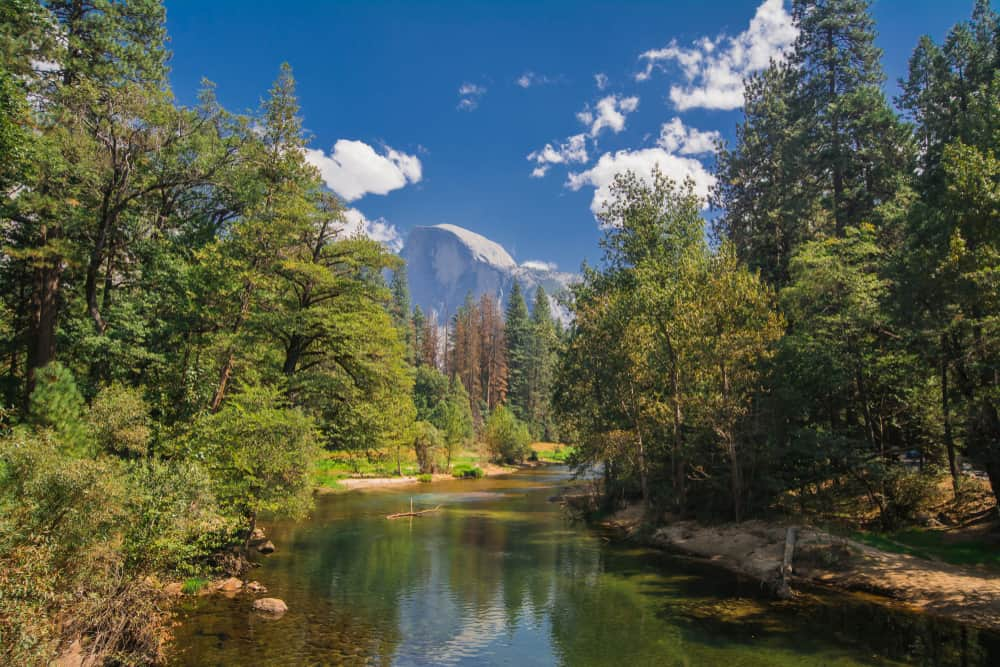 The granite face of Half Dome peaking between trees on two sides of the river with a faint reflection of the rock in the water.