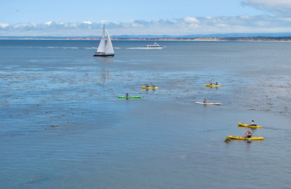 Six kayakers in yellow and green kayaks, one sailboat, and one speedboat out in the water in Santa Barbara