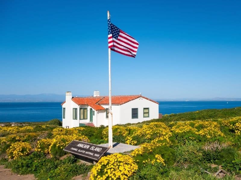 An American flag in foreground with yellow flowers and a small white house with a orange roof looking onto the Pacific Ocean and other islands in the Channel Islands archipelago.