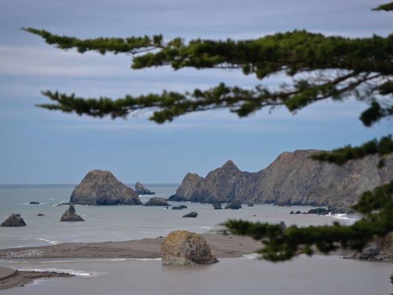 the coastline of sonoma at jenner