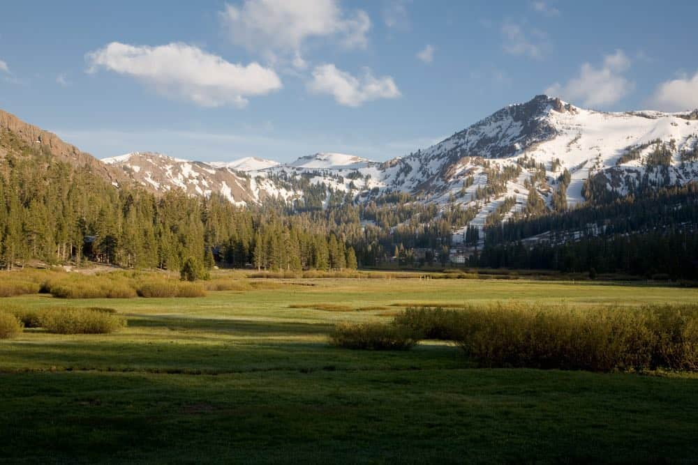 Meadows near Kirkland make for an easy hike in Lake Tahoe. Grass, pine trees, and snow-covered peaks in the distance.