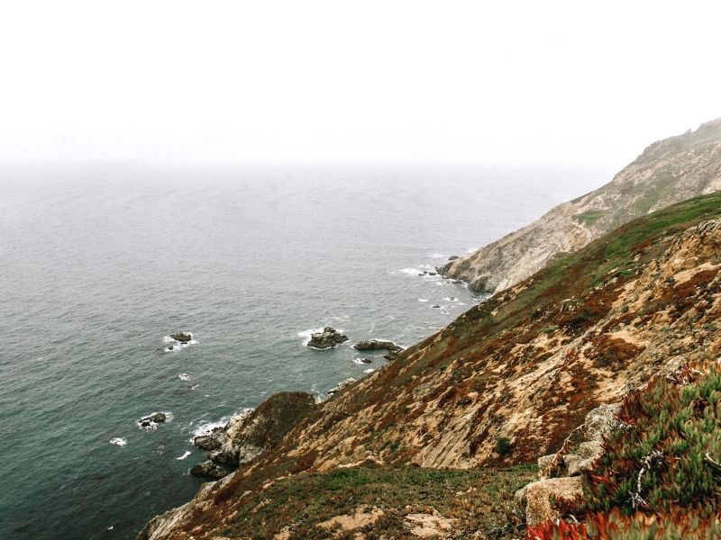 The rocky, foggy cliff edge with wild brush and grass in Point Reyes California, a must visit on a Northern California road trip