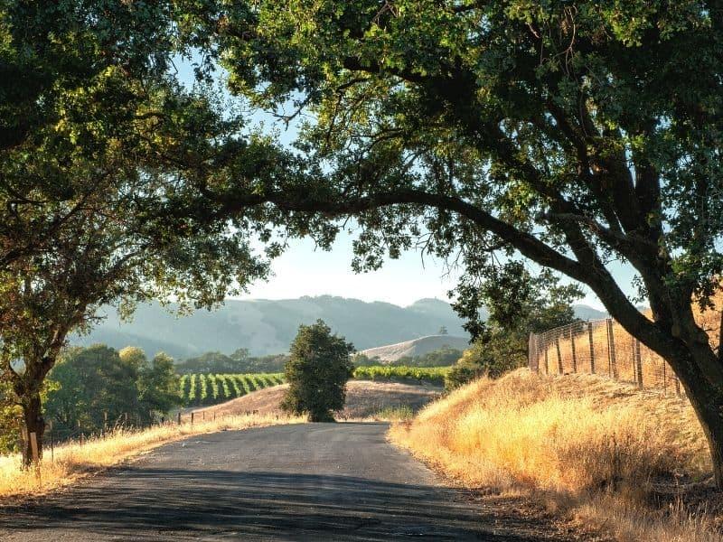 rustic landscapes in sonoma county california