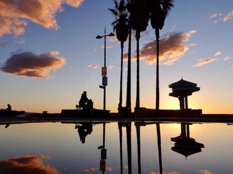 The sunset in Los Angeles reflecting from a puddle on the ground, with palm trees, a man on a bike, and a watchtower silhouetted by the setting sun.