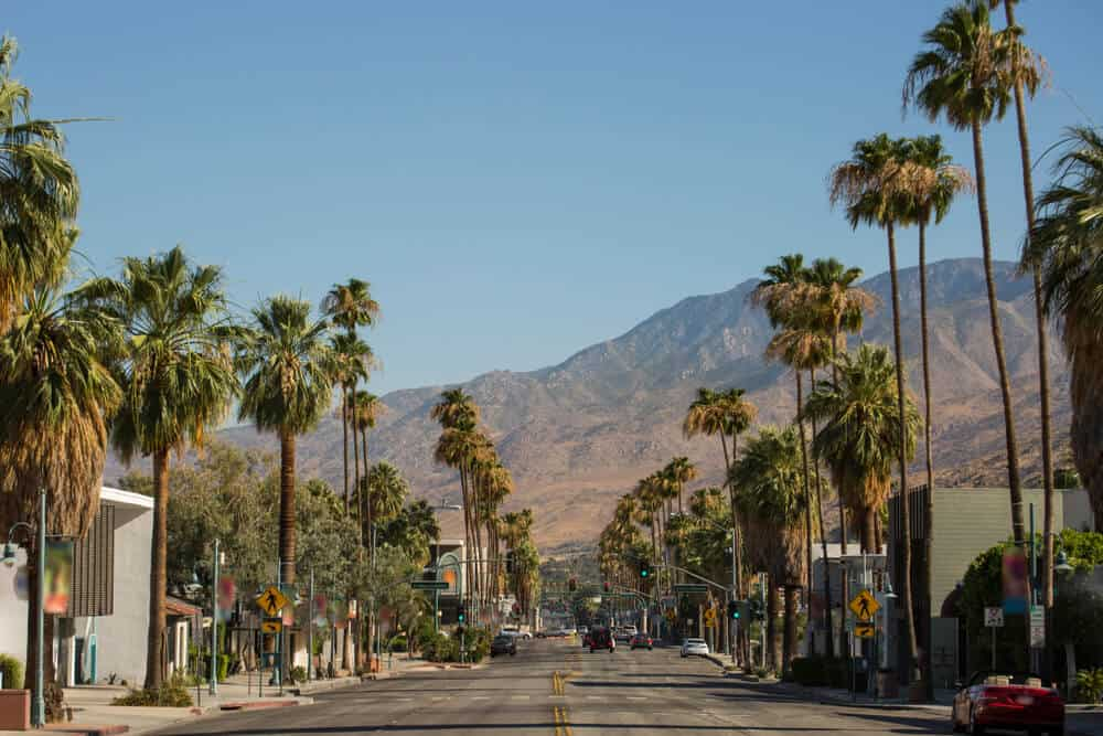 A view of the mountains with palm trees lining the street on a blue sky day in Palm Springs, a favorite road trip from Los Angeles