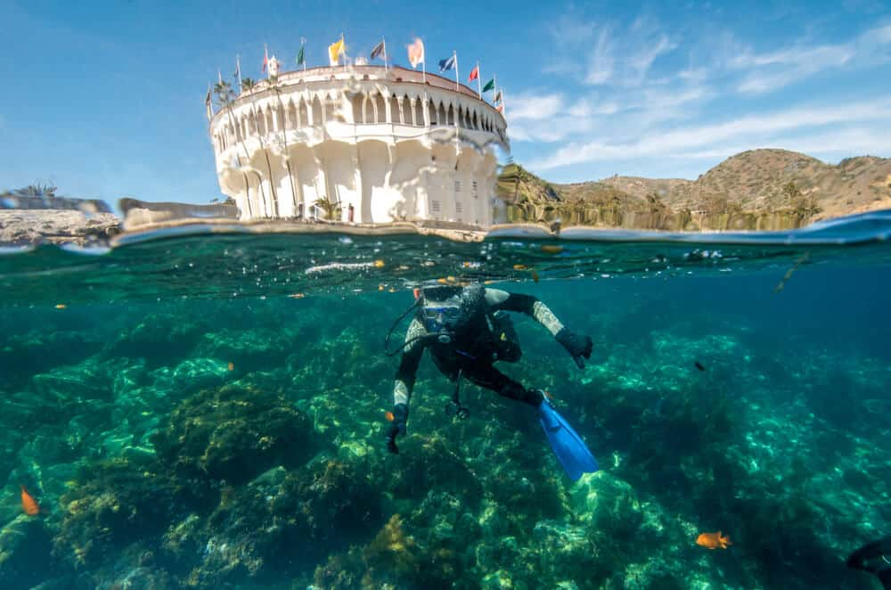 A man scuba diving with the photo half showing what is going on under the water and half what is going on above water: above the water edge is a white casino building covered with flags and small hill sform the island in the background