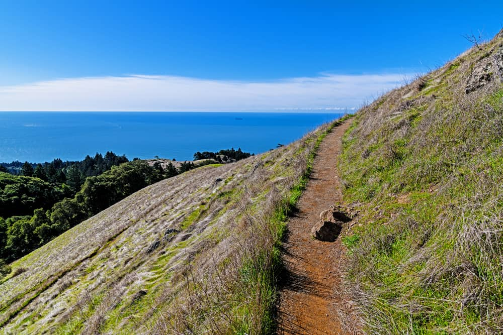 The brilliant blue water of the Pacific Ocean with fog on the horizon, on a clear day at Mount Tam State Park, hiking on a hillside trail.