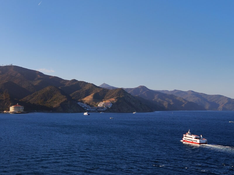 Red and white ferry heading straight towards the island of Catalina with a blue sky and the distinctive white round Avalon casino visible on the shoreline.