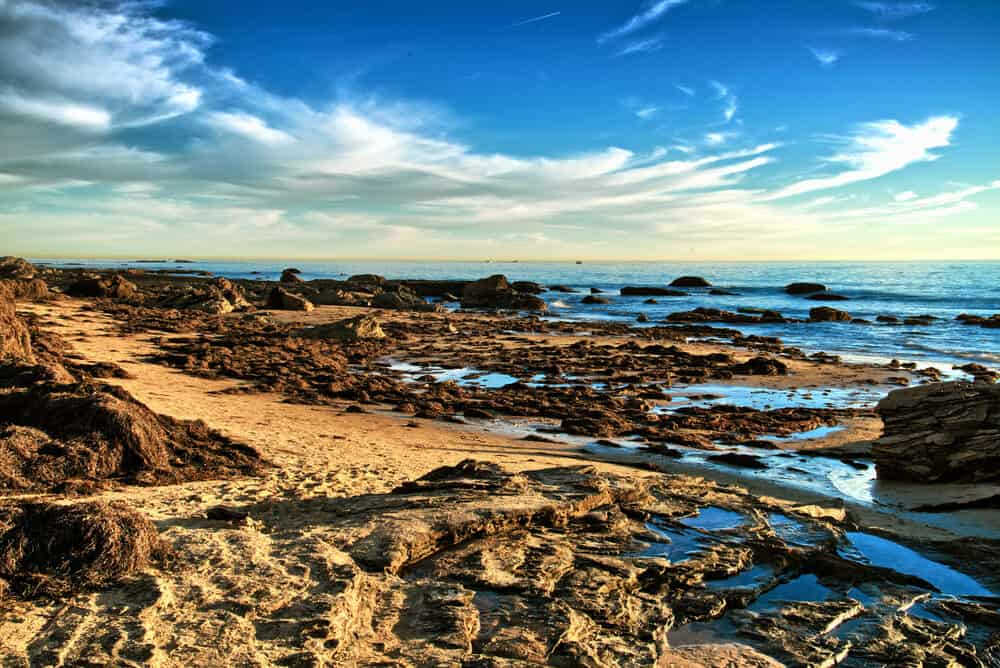 The rocky shore on the beach of Crystal Cove State Park, where rock formations have formed small tide pools where ocean water collects, on a late afternoon sunny day.