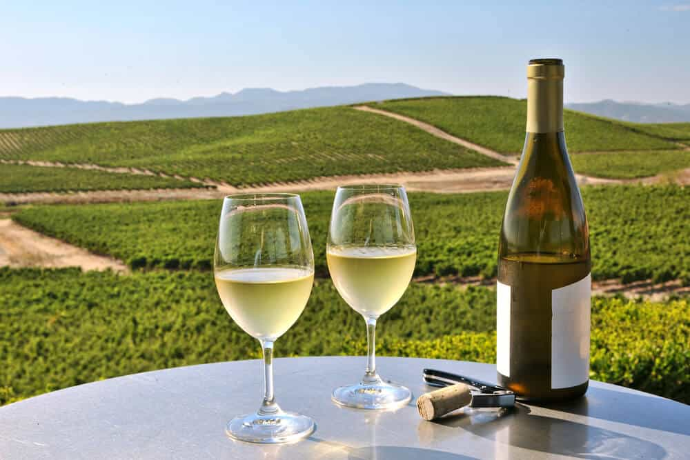 Two glasses of white wine with the rolling vineyards in the background