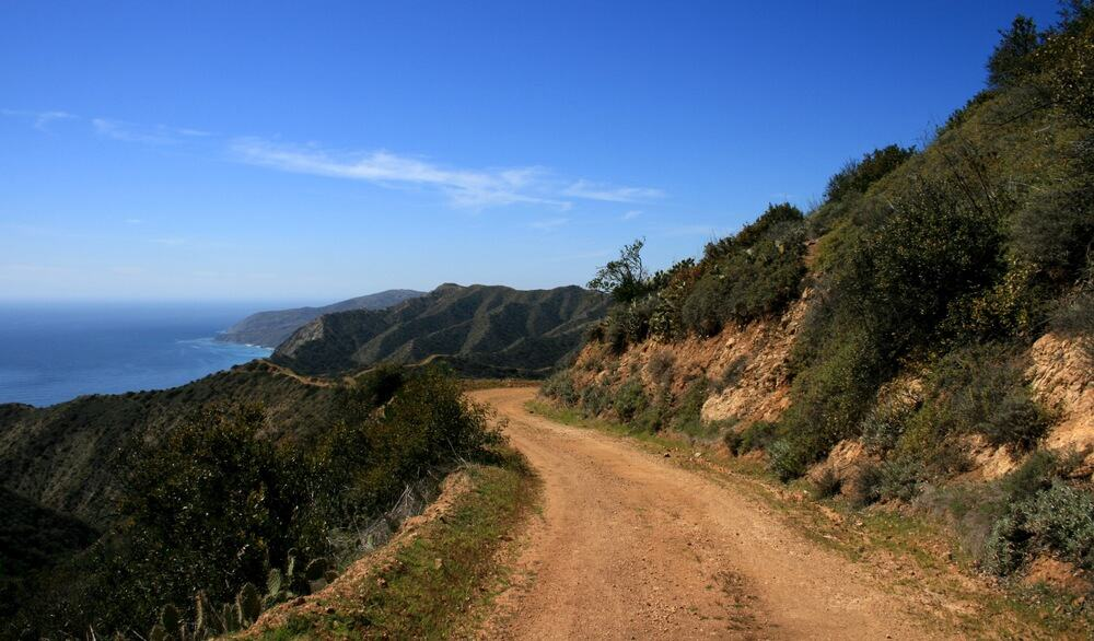 Dirt road on Catalina island with rugged shrubbery and ocean to the left side