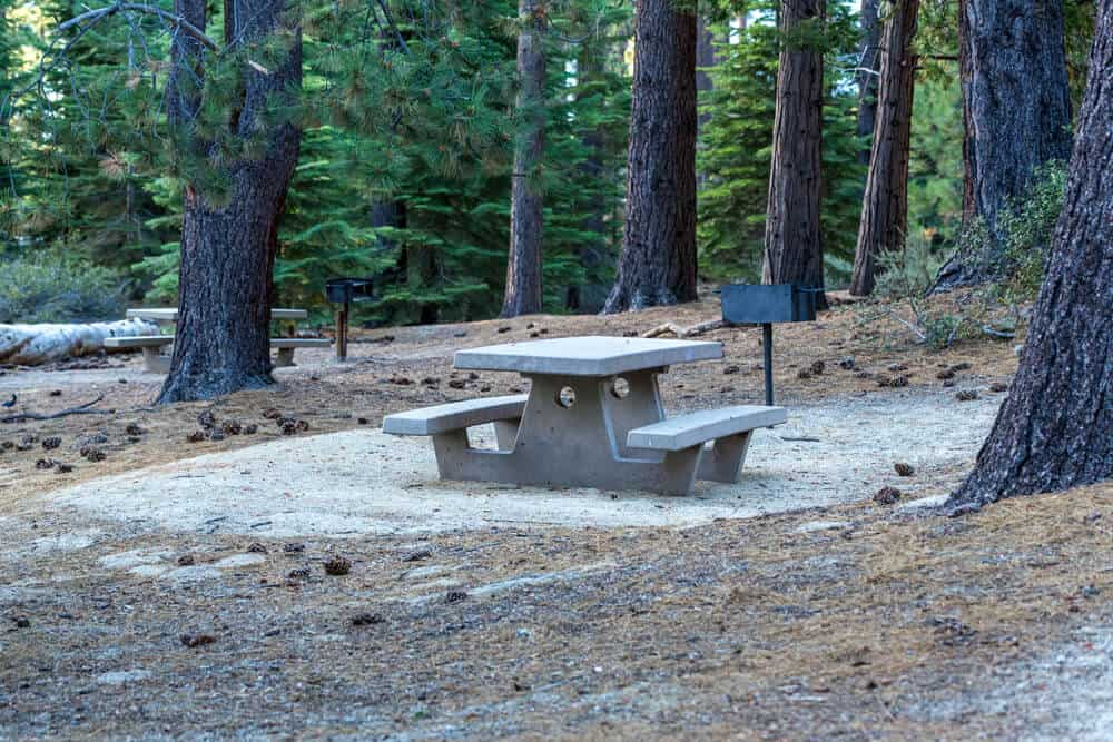 Stone picnic table next to a grill in the Tahoe forest surrounded by pines with pine cones scattered on the ground at a popular Tahoe campgrounds.
