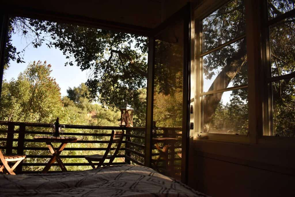 View from the bed of trees and a small table on the balcony from a California treehouse