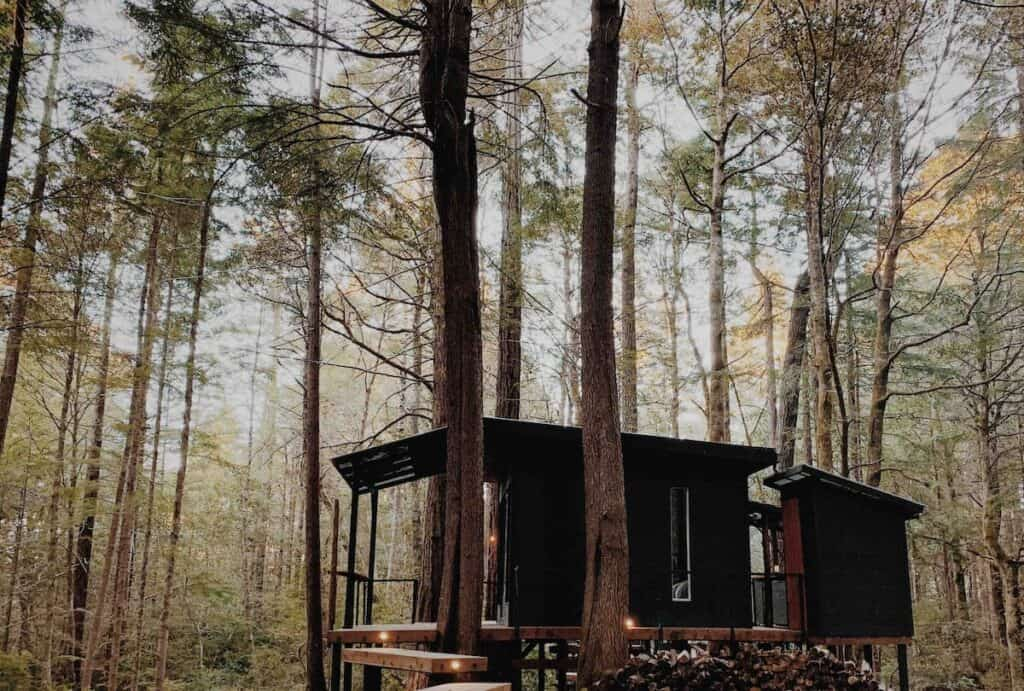 A trendy black treehouse surrounded by forest in Northern California