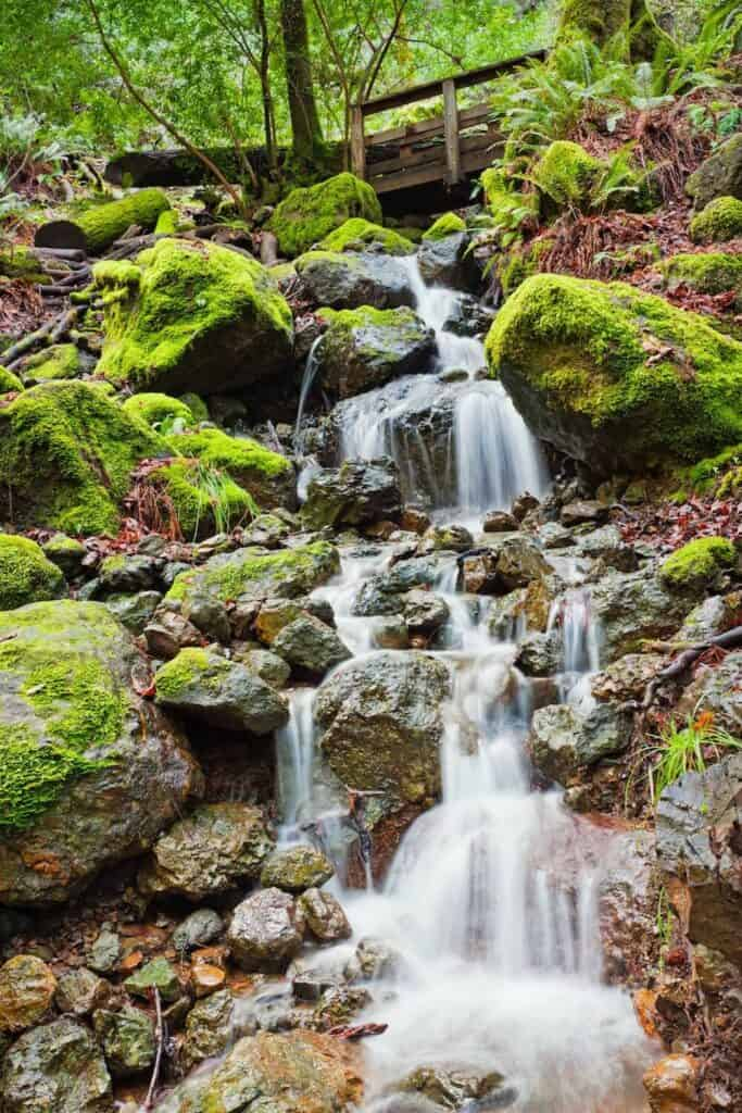 Waterfall cascading below a bridge in Mt Tam State Park, rocks covered in moss