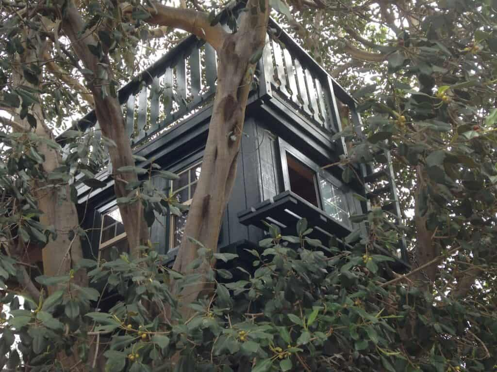 Gray-green treehouse surrounded by leaves and branches for rent on Airbnb