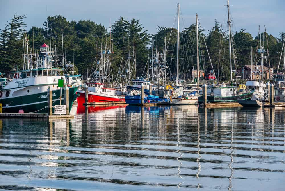 Several boats in the harbor with rippling water at the Eureka Harbor, walking there is a popular thing to do in Eureka