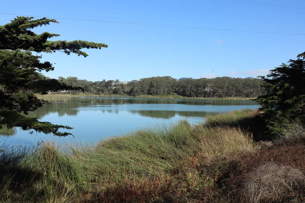 Grasslands around a peaceful tranquil blue Lake, lake Merced, on a little known hike in San Francisco