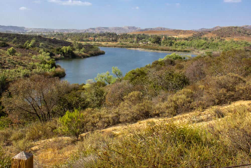 View of a reservoir lake, surrounded by dry yellow grass and green shrubs and trees, on a cloudless sunny day hiking in Orange County.