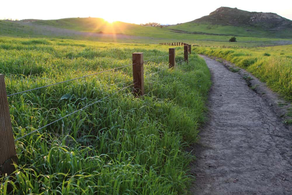 View of a hiking path on Quail Loop Hill, surrounded by green grass, fence posts, and hills with a setting sun on the horizon.