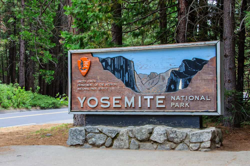 Yosemite entrance sign showing a wood carving of the valley, located on the side of the road amongst trees.