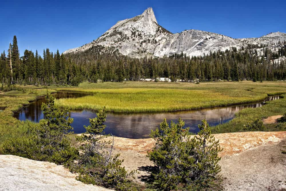 A river winding through the Tuolumne Meadows on the John Muir Trail, with a view of Cathedral Peak in the distance.
