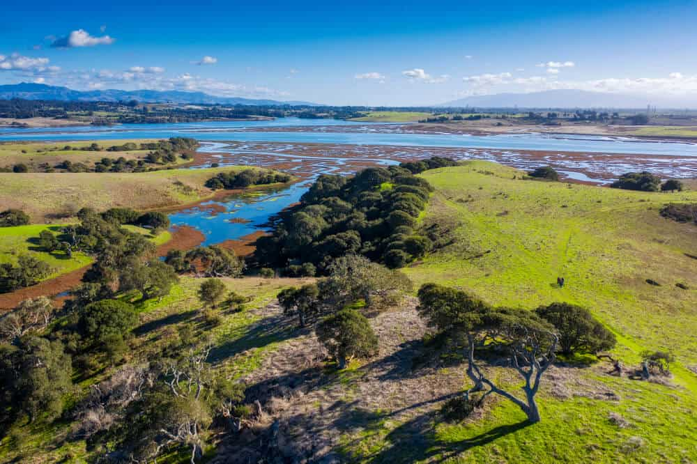 Aerial View of Elkhorn Slough, Moss Landing, California. Elkhorn Slough is a 7-mile-long tidal slough and estuary on Monterey Bay.