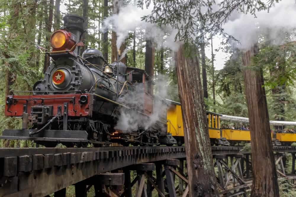 railroad going through the trees in santa cruz