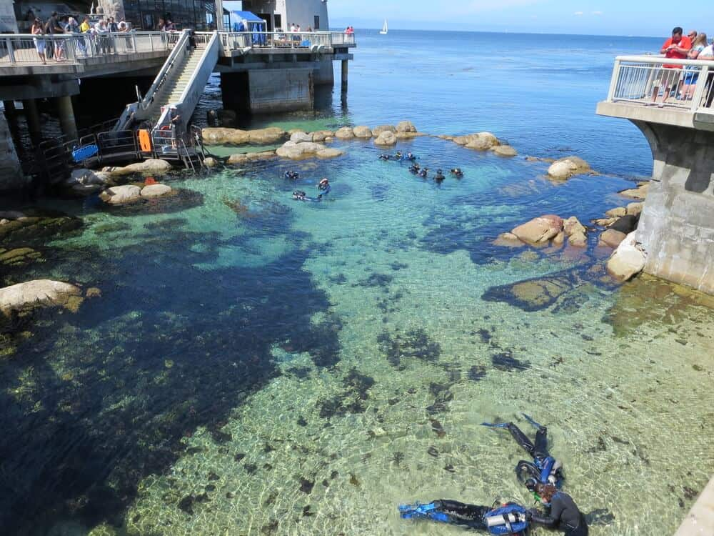 People learning to scuba dive with instructor assistance in the turquoise waters near Fishermans Wharf in Monterey