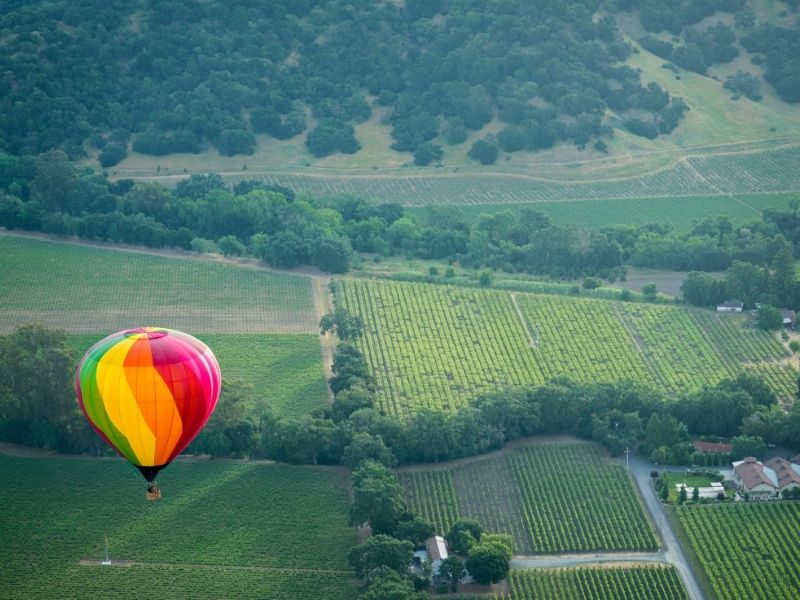 hot air balloon over a vineyard in napa