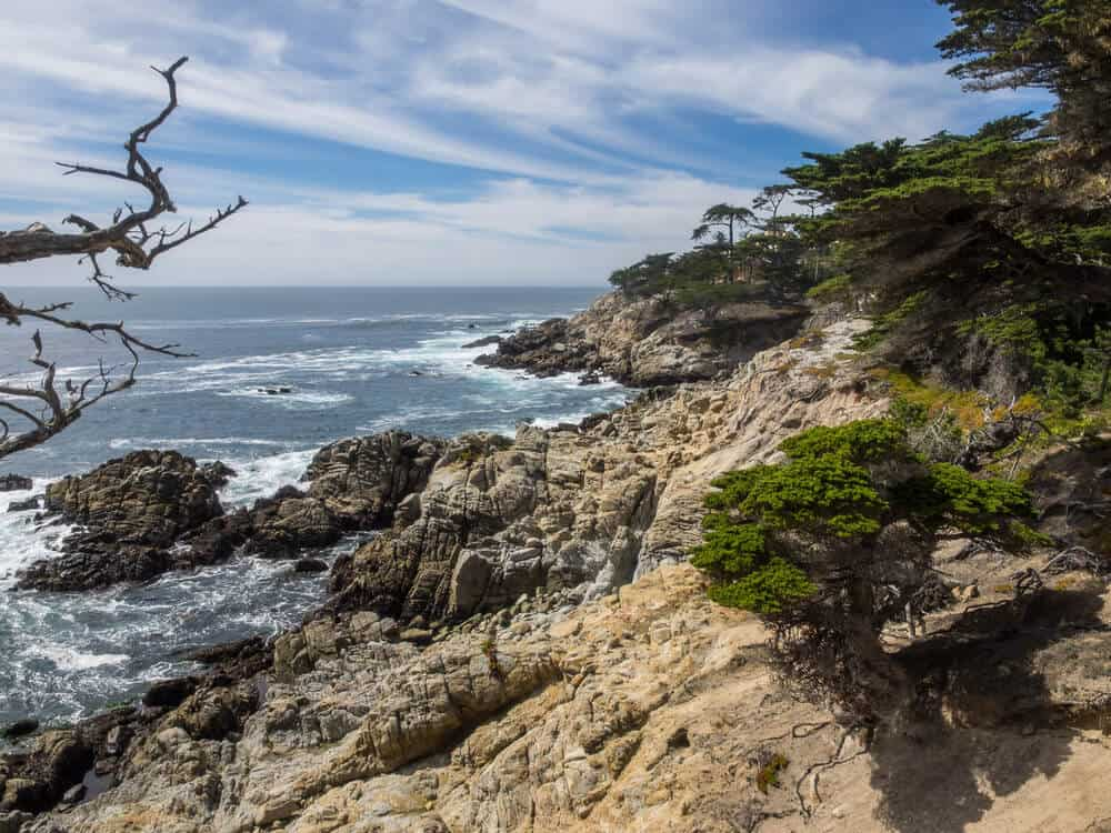 Pebble Beach along 17 Mile Drive - rocky coastline with trees and blue streaked sky with clouds