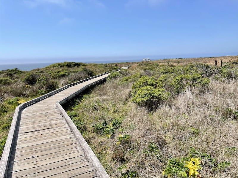 a boardwalk on the kortum trail winding through the grasslands
