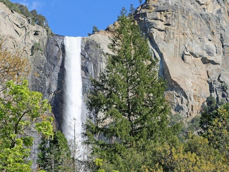 a single drop waterfall cascading over the granite cliff in Yosemite national park on an easy Yosemite valley hike