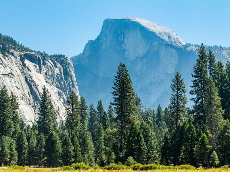 the towering granite formation of half dome, blue with shadow,  next to brilliant trees and grassy meadow