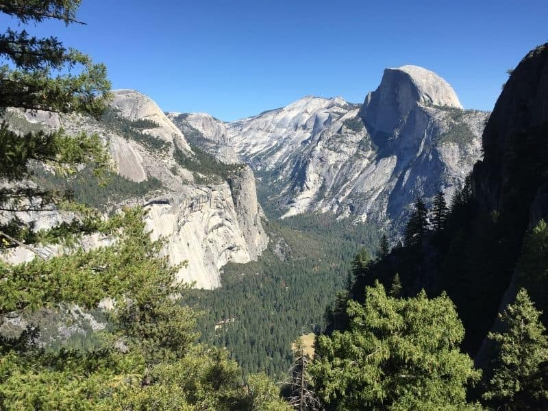 the famous view of yosemite valley as seen from above, with a view of all the trees in Yosemite valley below