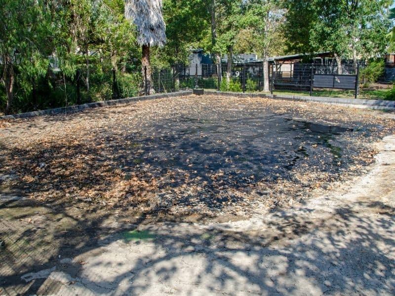la brea tar pits located in the middle of los Angeles, a quirky la date idea