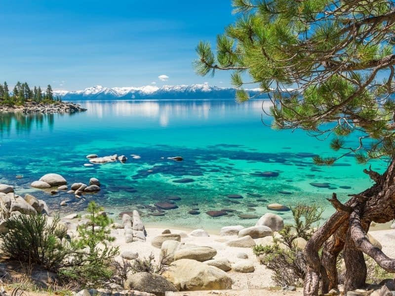 the brilliant blue waters of sand harbor in lake tahoe in the summer with rocks and trees
