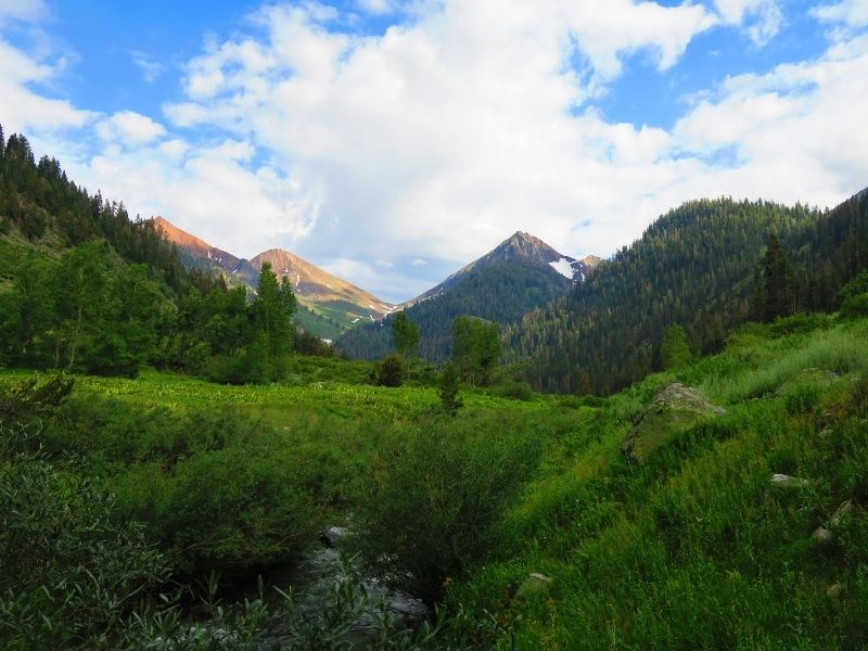 grassy landscape in the mineral king meadow, a popular hike in sequoia national park, on a sunny day with light clouds