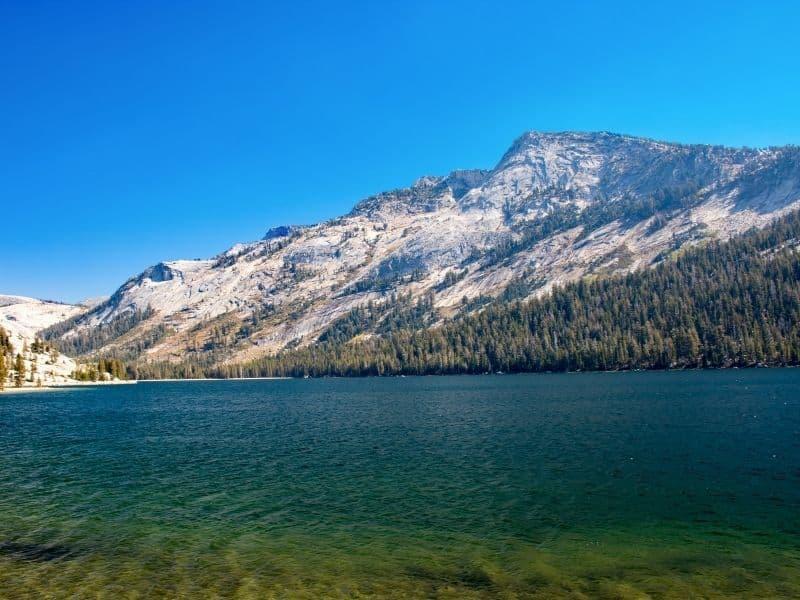 the beautiful turquoise waters of tenaya lake in yosemite