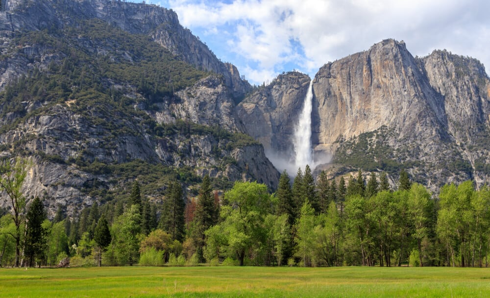 grassy meadow in a picnic area in yosemite national park with a view of a massive cascading waterfall in the background