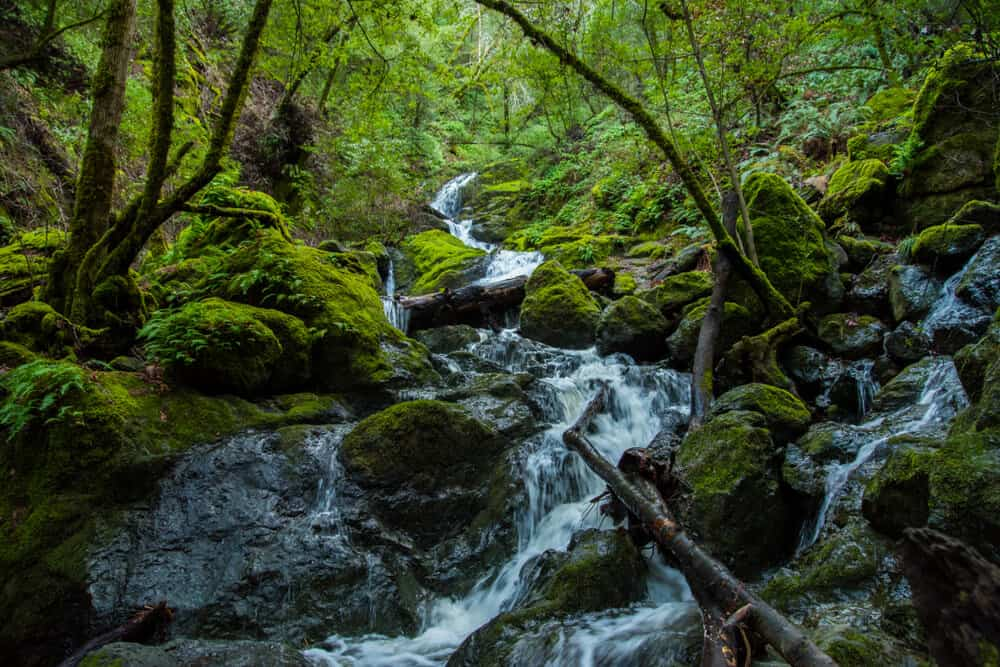 waterfall rushing down a hill with mossy rocks and green trees